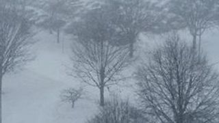 Several Inches of Snow Blankets Central Iowa - Video