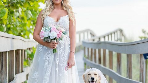 Pesky poo-ch! Canine flower girl photobombs romantic sunset beach wedding by pooping in background