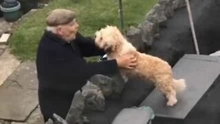 Dog shares loving relationship with neighbor