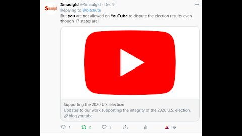 """YouTube Bans Videos Discussing """"Widespread Election Fraud"""""""