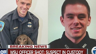Suspect in custody for Wayne State Officer shooting - Video