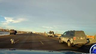 Dog jumps from moving car on I-70 - Video