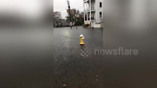 Downtown Charleston completely flooded
