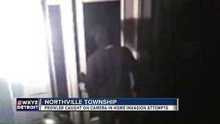 Police looking for nighttime prowler in Northville Township - Video