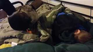 Protective Duck Stands Guard Over Sleeping Boy - Video