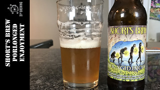 Short's Brewing 'Prolonged Enjoyment' beer review - Video