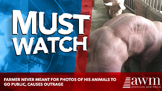Farmer Never Meant For Photos Of His Animals To Go Public, Causes Outrage - Video