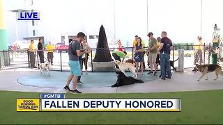 Fallen Deputy honored with dog park under Selmon Expressway - Video