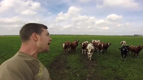 'Burping Cow Whisperer' captivates herd of cattle