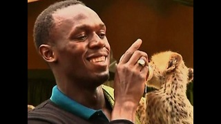 Usain Bolt Adopts Cheetah - Video