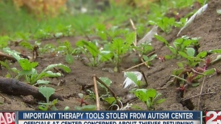 Ducks stolen from the Kern County Autism Center - Video