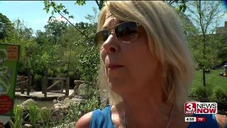 Mayor Jean Stothert wants changes to the fireworks ordinance - Video