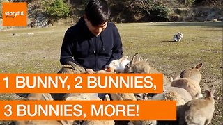 One Rabbit, Two Rabbits, Three Rabbits, More! - Video