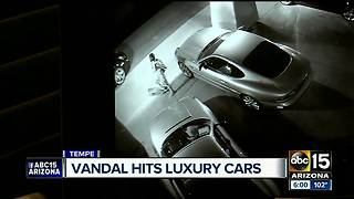 Man caught on video vandalizing high-end cars - Video