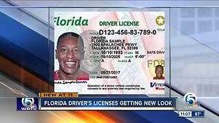 Florida driver's licenses get new look - Video