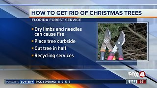 How to safely get rid of Christmas trees after the holiday