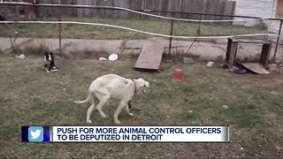 Push for more Animal Control officers to be deputized in Detroit - Video