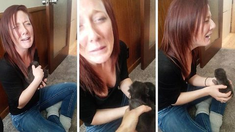 Woman bursts into tears on meeting newborn fox cubs for the first time