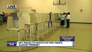 Races to watch in Michigan's August primary - Video