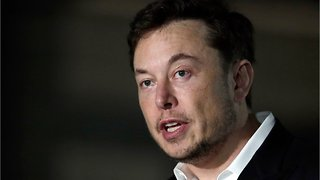 Tesla's New Chair Says Elon Musk Uses Twitter 'Wisely'