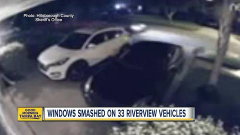 Over 30 vehicles damaged by Riverview vandals