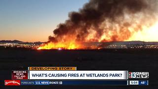 Wetlands Park fire 100% contained - Video
