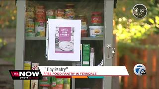 Ferndale couple launches free little pantry for people in need - Video