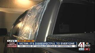 Dozens of LS cars vandalized with air rifle - Video