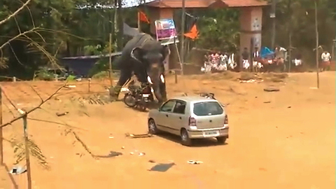 Angry Elephant Topples Car