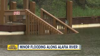 Alafia River Reaches Minor Flooding Stage - Video