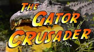 Alligator Shows Incredible Jaw Strength by Chomping on Huge Pumpkin - Video