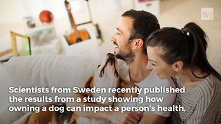 Scientists Reveal the Amazing Health Benefits of Owning a Dog - Video