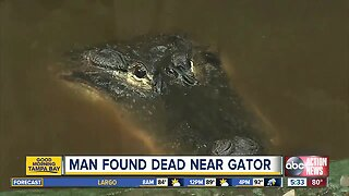 Deputies investigating body found near alligator in Fort Meade