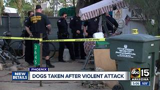 Two people remain hospitalized after Phoenix dog attack - Video