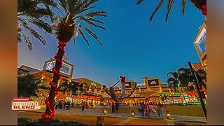 Enjoy the Holidays in Downtown St. Pete - Video