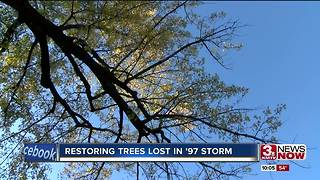 20 yrs after blizzard, tree regrowth still happening - Video