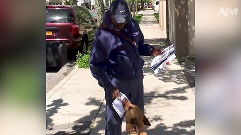 Mail Carriers Vs. The World