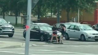 Women Help Gator Navigate Busy Intersection in Florida - Video