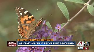 Westport community garden could see changes - Video