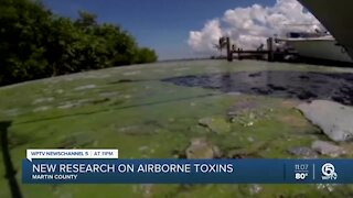 University of Florida scientists say airborne toxins from harmful algae blooms can travel 10 miles, linger for hours