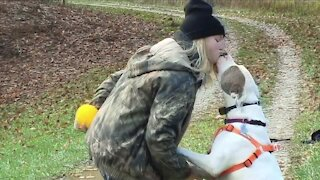 Therapy dog missing after rollover crash in Akron found safe, reunited with owner