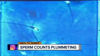 Sperm counts plummeting in western men - Video