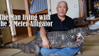 Man Lives With A 6 Foot Reptile For More Than Three Decades - Video