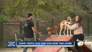 Survey: People love their dogs more than lovers