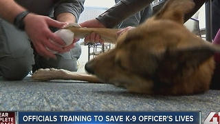 Official training to save K-9 officer's lives - Video