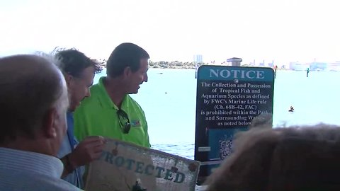 Event celebrates marine life protection