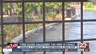 Three bodies discovered this week in local canals - Video