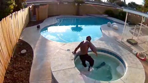 Heart stopping moment dog owner realises his pet has fallen into pool before jumping in to save her