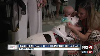 Salon being named after former bait dog - Video
