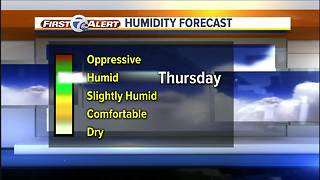Humid with rain on the way - Video